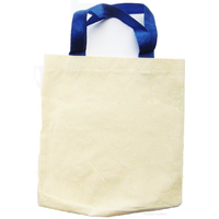 Small Plain Cotton Bag With Handles