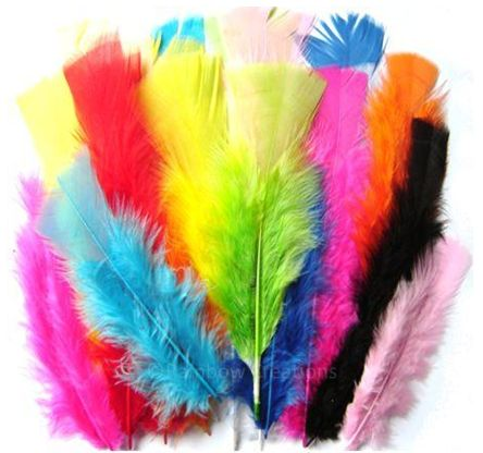 Coloured Feathers For Crafts | Children's Craft Supplies