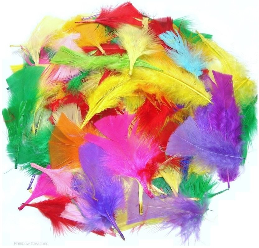 Mixed Small Craft Feathers Children S Craft Supplies