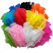 Bulk Craft Feathers - 300 Pack