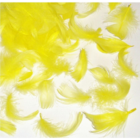 Tiny Yellow Feathers