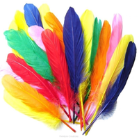 Assorted Coloured Quill Feathers