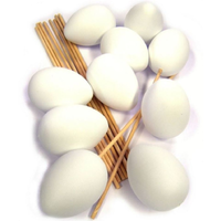 White Plastic Eggs