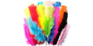 Coloured Feathers For Crafts