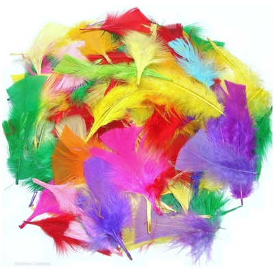 Mixed Small Craft Feathers