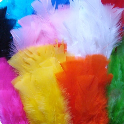 Bulk Craft Feathers